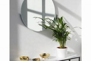 mirror in hall feature