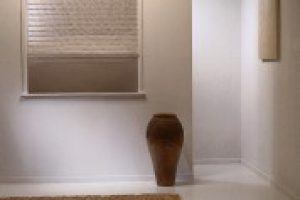 roman blinds in entry hall hallway space