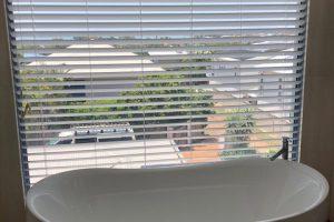 internal venetian blinds