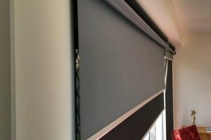 Dual roller blinds in lounge and living area
